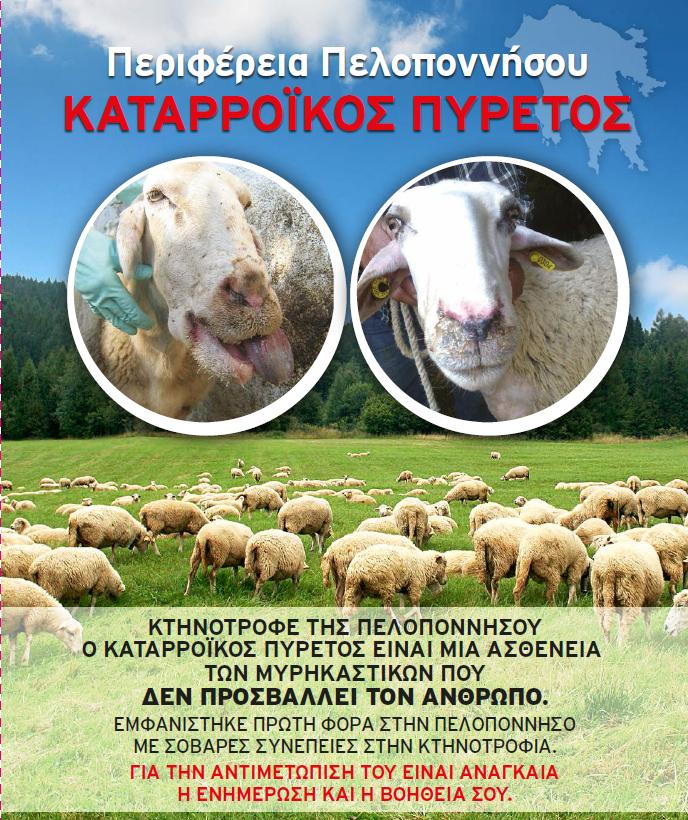 Ενημερωτικό φυλλάδιο καταρροικού πυρετού στη Περιφέρεια Πελοποννήσου