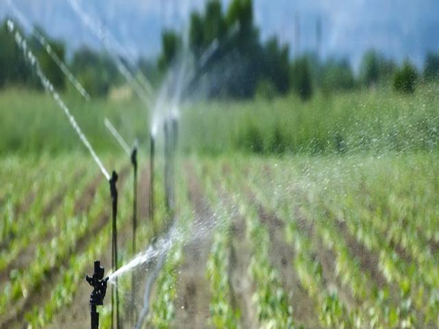 Υπηρεσίες Συμβούλου για την ηλεκτροδότηση γεωργικών  εκτάσεων σε περιοχές των ποταμών Λάδωνα – Αλφειού
